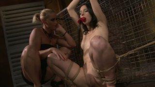 Cock hardening BDSM scene of sultry brunette Melyssa